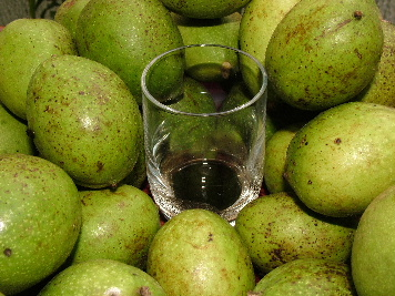 Time to make some more (green walnuts for nocino)